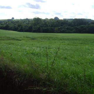 Comprar - Área Rural